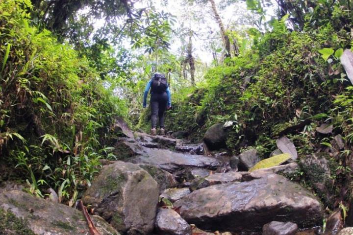 Tour de avistamiento de aves en la Reserva Natural La Romera