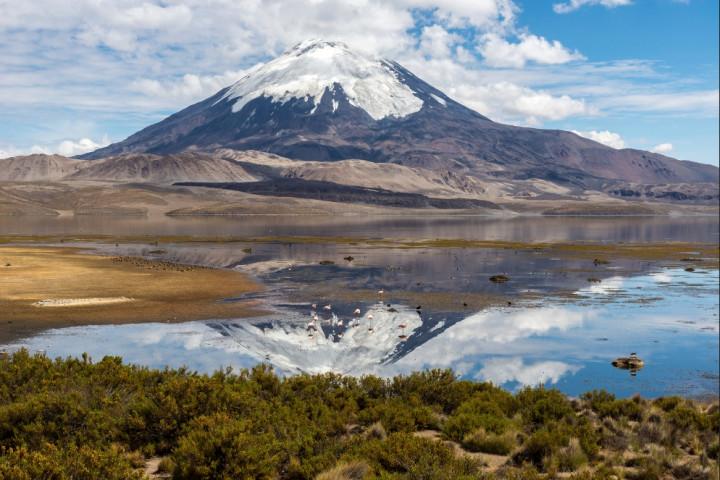 Tour por el Morro de Arica y el valle de Azapa