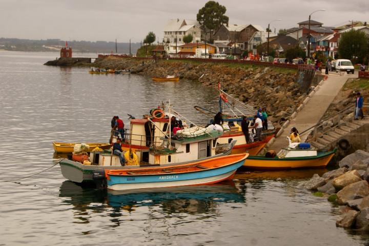 Navegación de 1 hora por el lago Llanquihue