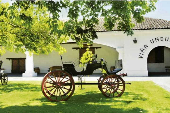 Tour y cata de vinos en Viña Santa Rita