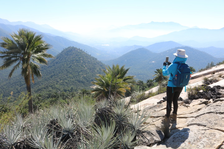 Tour Panorámico en La Cordillera de Los Andes
