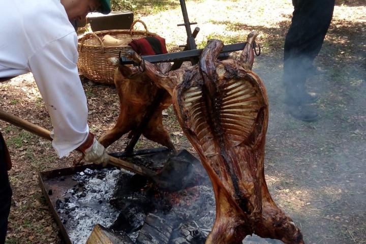 Tour por las viñas Caven y Francois Lurton, con almuerzo en Hacienda Histórica Marchigüe