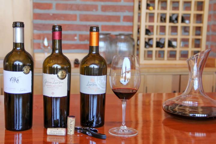 Tour por Viña San Esteban con almuerzo