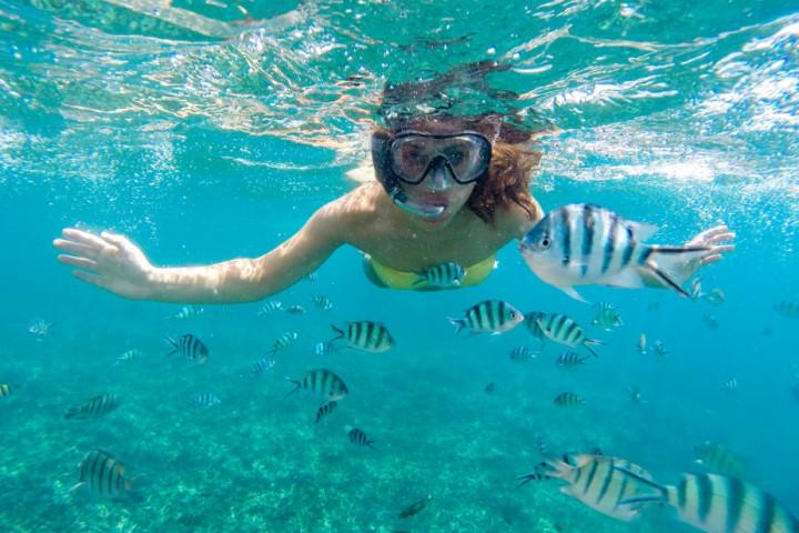 2 días de buceo por las Islas del Rosario (sólo para buzos certificados)