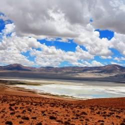 Tour al Parque Nacional Salar del Huasco