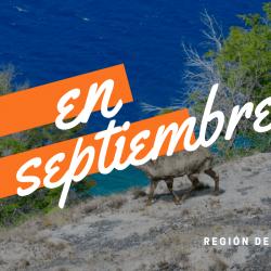 Apertura de Áreas Silvestres Protegidas en Aysén