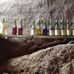 Cata Social de Vinos Naturales del Valle de Marga Marga