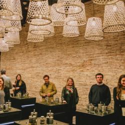 Tour del vino chileno en Vinolia