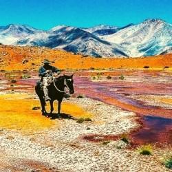 Excursión Elqui Andino