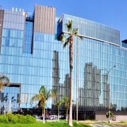 Fiestas Patrias en Iquique en Hotel Hilton Garden