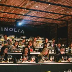 Tour del vino chileno con copa de vino y tabla de quesos en Vinolia (para 2 personas)