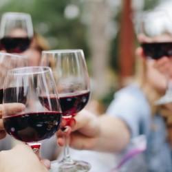2 días 100% wine experience - 3 viñas, 3 sub valles - O´Higgins