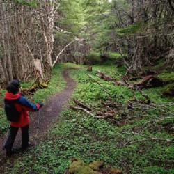 Excursión a la Reserva Nacional Magallanes (octubre-abril)