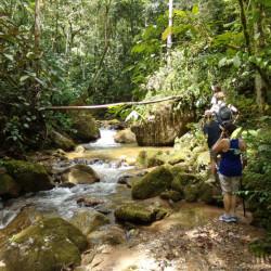 Caminata a la cascada La Miel