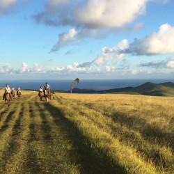 Cabalgata Ma'unga Terevaka (Punto más alto de la isla)