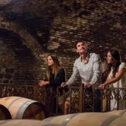 Tour y cata de vinos en Viña Concha y Toro