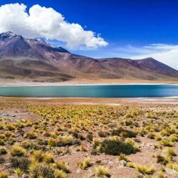 Fiestas Patrias San Pedro Atacama en Hotel Poblado Kimal