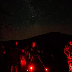 Tour al observatorio natural El Bellotal