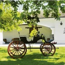 Tour y cata de vinos en Viña Undurraga