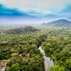 Tour de día completo por el Amazonas, con visita a la Comunidad Nativa de los Bora