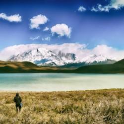 Circuito W en Torres del Paine (refugios + guía)