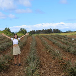 Tour Agricultor - Las plantaciones de la isla
