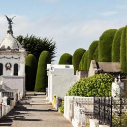 Tour por el cementerio de Punta Arenas