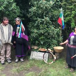 """CulTour Mapuche """"Ruka"""""""