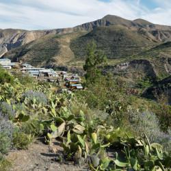 Tour a Socoroma y las Termas de Jurasi
