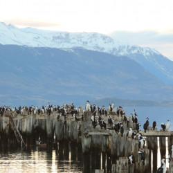 Tour histórico por Puerto Natales, Puerto Consuelo, Puerto Prat y Puerto Bories