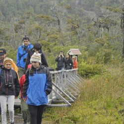"""Parque Nacional Chiloé """"En la ruta de Darwin"""""""